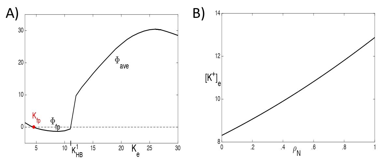 Figure 7:  A) Plots of fp(Ke) and ave(Ke). The threshold for depolarization block is Ke = K_HB^1. B) Plot of the depolarization block threshold versus the neuron pump strength N.